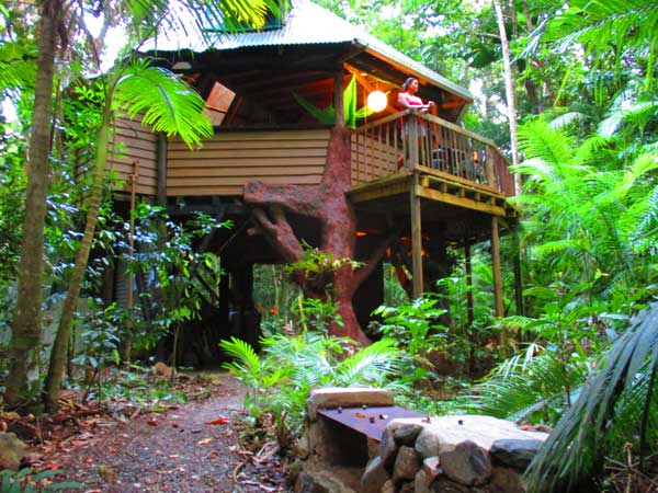 daintree accommodation in the jungle house at cape tribulation